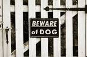 beware_watchdogging