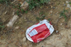 A crushed budweiser can sits in a forest where it makes no sound