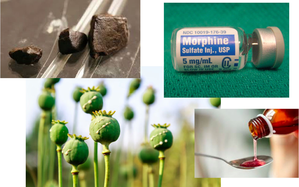 Examples of opioids, including heroin, morphine, opium poppies, and cough syrup