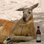 Alcohol takes its toll on Australia